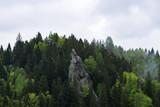Fortress Urich. Lviv region