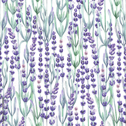 Watercolor lavender pattern - 160449064