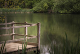 Shallow depth of field landscape image of vibrant peaceful Summer lake in English countryside