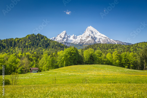Idyllic summer landscape in...