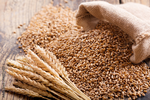 wheat ears and grains - 160573622