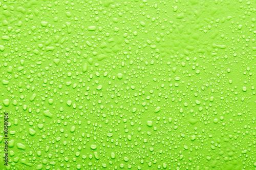 Leinwandbild Motiv water drops on a green bsckground