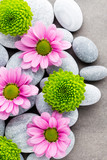 Spa stones and flowers on grey background.