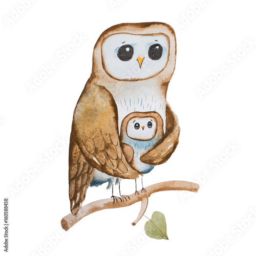 Cartoon owl mother covering owlet with wings sitting on tree branch hand-drawn - 160588458