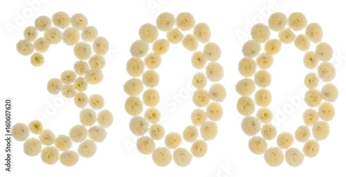 Poster Arabic numeral 300, three hundred, from cream flowers of chrysanthemum, isolated