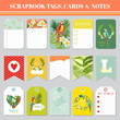 Tropical Flowers and Parrots Theme for Scrapbook Tags, Cards and Notes for Birthday, Baby Shower, Party, Design in vector