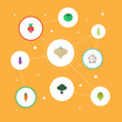 Flat Icons Cabbage, Pitaya, Pumpkin And Other Vector Elements. Set Of Berry Flat Icons Symbols Also Includes Fruit, Carrot, Eat Objects.
