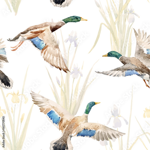 Watercolor vector pattern with ducks - 160770840