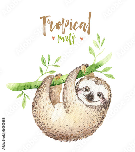 Sloth Nursery Decor Canada