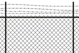 Fence. Vector. - 160814845