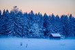 Quadro wintertime