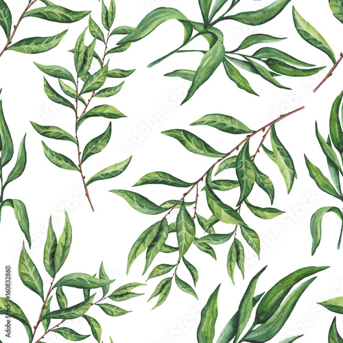 Seamless Pattern of Watercolor Tree Branches and Leaves - 160832860