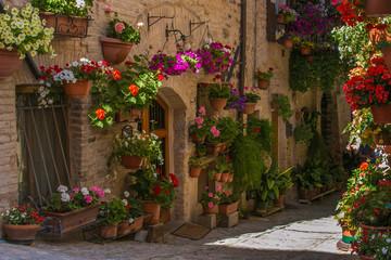 Vicolo fiorito di un borgo medievale italiano © Buffy1982