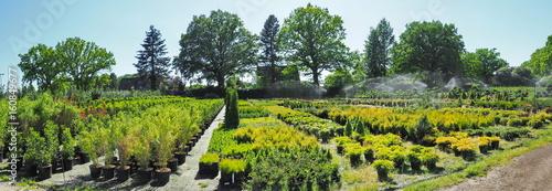 Gartenbau - Gärtnerei