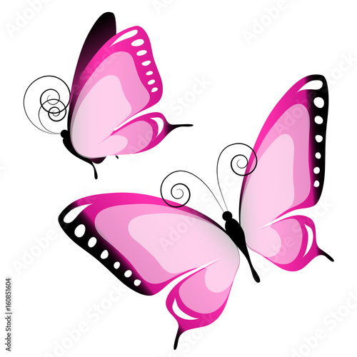 Deurstickers Vlinder beautiful pink butterflies, isolated on a white