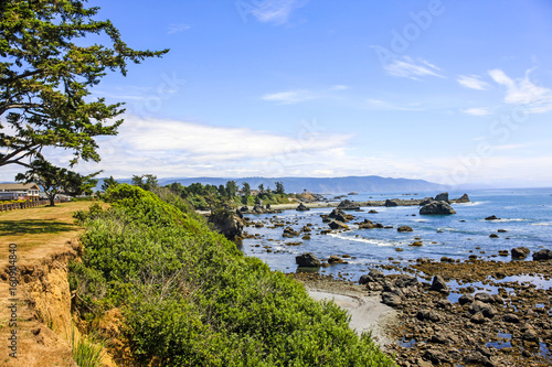 View of the Pacific coast near Crescent City, California, USA Poster