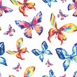 Watercolor colorful butterflies. Seamless pattern