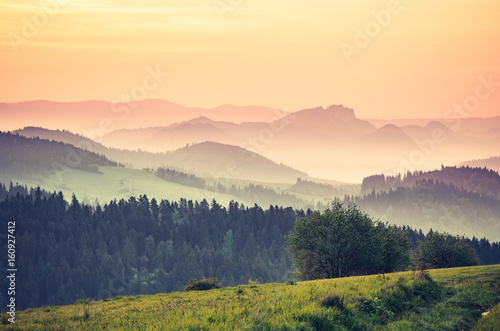 Obraz Moments before sunrise in misty Carpathian mountains, spring, Poland