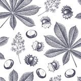 Decorative chestnut pattern - 160934481