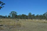 landscape in Queensland australia