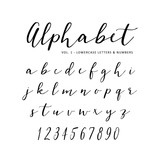 Hand drawn vector alphabet. Script font. Isolated letters written with marker or ink. Lettering. - 160943203