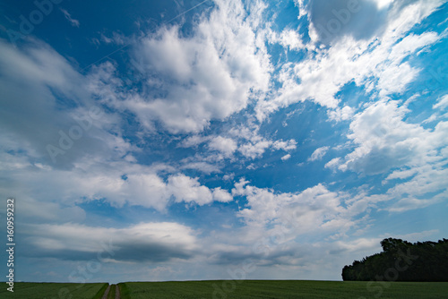 Green field and clear cloudy sky