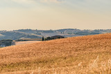Rural landscape of valleys in summer in the province of siena in tuscany italy