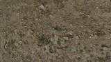 Mud and Rocks Texture 04