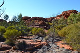 Landscape at Kings Canyon