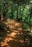 le sentier des ocres à Roussillon, petit village de Provence dans le Vaucluse