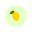 Lemon flat icon. Round colorful button, circular vector sign, logo illustration. Flat style design