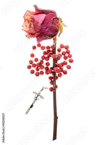 Catholic rosary and dry rose on white