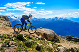 Whistler Mountain Bike Park, BC, Canada - Top of the wolrd trail, July 2016 - 161409215