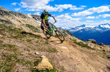Whistler Mountain Bike Park, BC, Canada - Top of the wolrd trail, July 2016