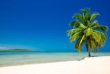 tropical beach - 161422483