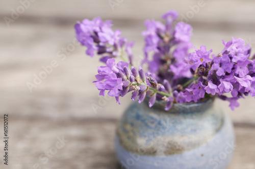 Fragrant flowers of lavender fresh purple