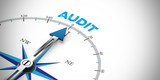 Business Audit als Konzept - 161518831