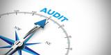 Business Audit als Konzept