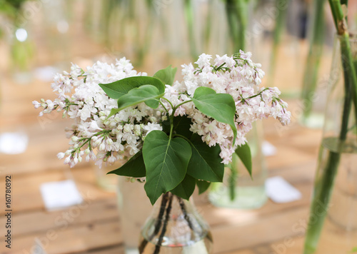 White lilac branches in a glass vase