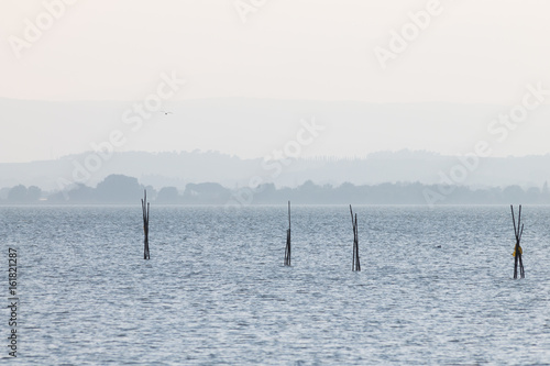 Wooden poles on a lake and a seagull flying above, with distant hills in the background, and very soft colors, mostly white and light blue - 161821287