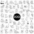 dog characters large set - 161839604