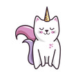 isolated magic cat unicorn icon vector illustration graphic design