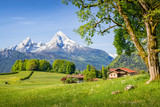 Mountain landscape in the alps in summer with Watzmann, Bavaria, Germany - 161864430