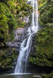 Cachoeira na floresta.
