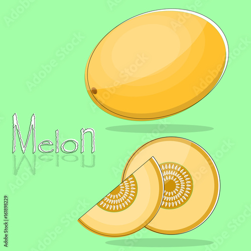 Whole and sliced melon in flat design. Isolated objects - 161898229