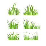 Green grass set - 161929662