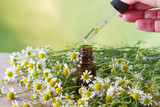 Camomile essential oil and hand with dropper