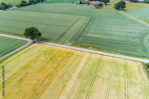 Foto op Canvas Olijf Luftbild vom ländlichen Raum in Niedersachsen, Deutschland