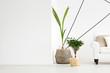 Green fresh plants