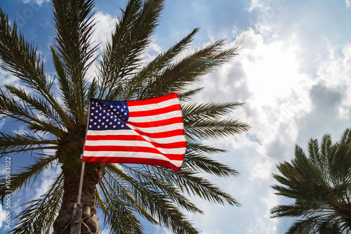 Poster US Flag and Palm tree against blue sky.